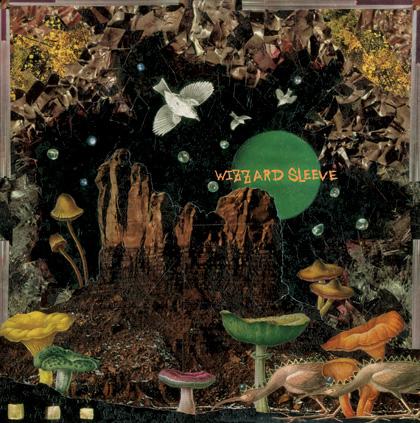 044-WIZZARD sleeve LP